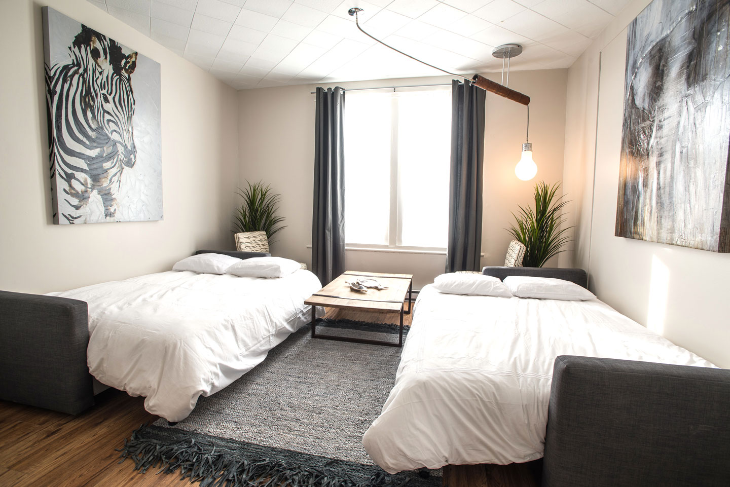 Mtl Zoo: spacious living room with 2 sofa beds