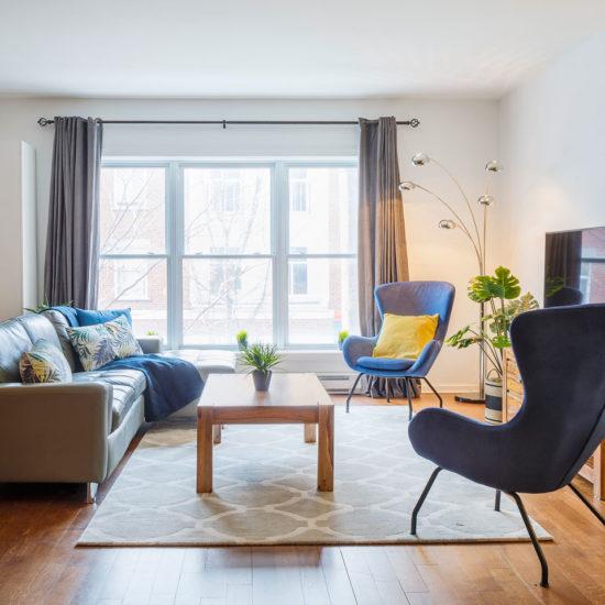 Suite 103: luminous living room